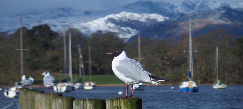 Lake District: Days 2 &3